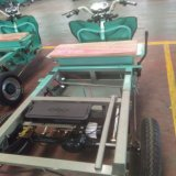 Adulto 800W triciclo de carga elétrica com 1.1*1.6M Grande Carga