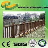Rete fissa poco costosa di buona qualità WPC dalla Cina