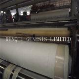 Alta qualità di alta qualità che impermeabilizza Geomembrane composito