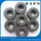 De permanente Magneet van het Ferriet/de Ceramische Magneet Gesinterde Magneet van de Ring voor Motor