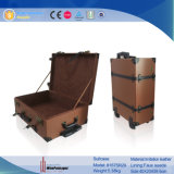 Valigia di cuoio di lusso di corsa della valigia di immagazzinamento in la valigia del vino dell'unità di elaborazione