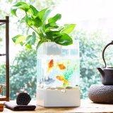 Tanque de peixes acrílico do mini aquário Desktop do diodo emissor de luz do USB