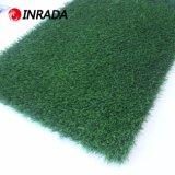 [هيغقوليتي] اللون الأخضر يستعمل لعبة غولف داخليّة يضع سجادة لعبة غولف عشب