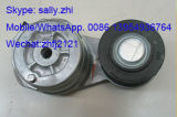 Riemen-Spanner-Riemenscheibe C3936213/C3976834 für Dcec DieselDongfeng Motor