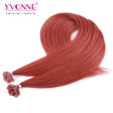 カラー#35 Prebond釘の先端の人間の毛髪の拡張