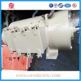 moteur électrique à haute tension inférieur de C.C de 200kw T/MN