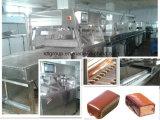 Revêtement de chocolat entièrement automatique machine (modelIEB400)