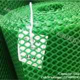China tela plástica de HDPE de fábrica de malhas metálicas de frango