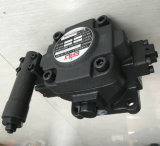 Оригинал Тайвань мы направляемся в постоянного тока-1A-F40d-20 лопастного насоса переменной производительности