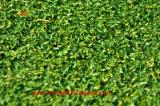 Relvado sintético da grama da boa qualidade do mini golfe