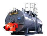 Qualitäts-kundengerechter Dampfkessel