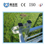 La Cina ha galvanizzato il fornitore della rete fissa dei cervi del cavallo della rete fissa del bestiame