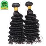 Indisches menschliches Jungfrau-Haar, das für indisches lockiges spinnt