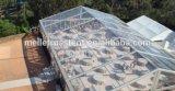 Recuadro transparente parte exterior del bastidor de aluminio de exposiciones Carpa Carpa de eventos