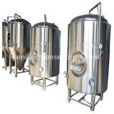 300Lによっては小さい価格の醸造装置が家へ帰る