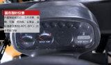 2016년 중국 3.0ton 디젤 엔진 지게차