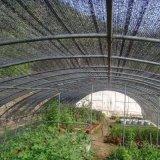 Réseaux d'ombre de Sun de HDPE d'agriculture, taux 70%-90%Shade
