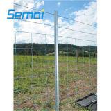 Galvanizado en caliente de 1,2 m de alto límite elástico Feild valla para ganados