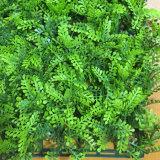 [أوف] يحمى سلع معمّرة [فيربرووف] اصطناعيّة عشب تمويه معمل ورقة سياج سياج شاشة عزلة شاقوليّة حديقة اللون الأخضر جدار