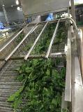 Новый шпинат IQF Bqf органический