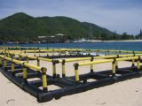 HDPE Rohr für Aquakultur-Fischzucht-Rahmen auf dem Wasser