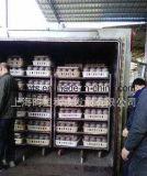 Heißer Verkaufs-Pilz-Bearbeitung-Sterilisator mit Qualität