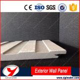 Aucun panneau plat de longue vie de mur extérieur de modèle de décoration d'amiante