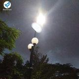 Bluesmart 100W complet/a intégré le réverbère extérieur solaire de jardin de DEL avec le détecteur de mouvement