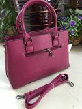 Borsa elegante dell'unità di elaborazione Shiling del sacchetto della signora Handbag Women Bag Designer di modo (WDL0073)