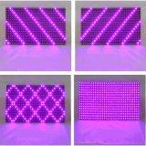 32X16 matriz 320*160mm impermeáveis para o módulo ao ar livre roxo do indicador do diodo emissor de luz P10 da tela roxa do desdobramento do diodo emissor de luz da cor-de-rosa P10
