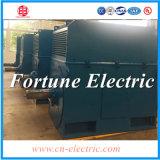 AC électrique haute tension du moteur de la machine