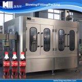 Planta embotelladoa de la máquina de rellenar de la bebida carbónica automática para la consumición suave