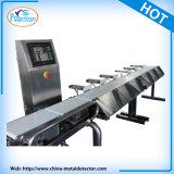 食料生産をコンベヤーベルトによって機械を点検する重量