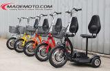 Elektrischer Mobilitäts-Roller (ES3502)