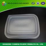 Plastikmittagessen-Kasten nehmen Nahrungsmittelkasten heraus