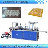 Automatische Plastikverpackungsmaschine für Biskuit-Tellersegment/Behälter/Kasten