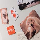 Stampa resa personale memorabile dei grafici del magnete del frigorifero della foto di alta qualità