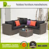 Мебель сада роскошной софы мебели софы ротанга установленной напольной секционной установленная
