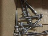 M5.5X50 acier inoxydable auto-fileteux 304