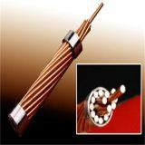 木のドラムの銅の覆われた鋼鉄繊維ワイヤー