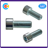 건물을%s Hexgon 안 나사가 DIN/ANSI/BS/JIS Carbon-Steel에 의하여 또는 Stainless-Steel 4.8/8.8/10.9는 직류 전기를 통했다