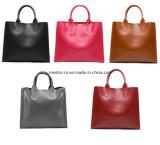 Handbag en cuir d'unité centrale de mode belle de Madame Women's