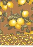Tablecloth impresso PVC colorido com projeto do vegetal e da fruta