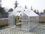 庭(W814)のためのアルミニウム趣味の温室