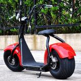 حارّ خداع 2017 جديدة مواد مدينة جوز هند إطار العجلة سمين كهربائيّة درّاجة ناريّة [سكوتر]