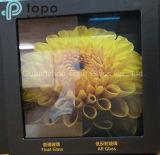 стекло Ar поплавка листа 3mm-12mm Анти--Ультрафиолетов подгонянное (AR-TP)