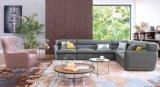 حارّ عمليّة بيع أريكة مجموعة من يعيش غرفة [فورنتيور]