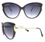 Alta qualidade mais recente Design Popular Tr90 moda óculos de sol
