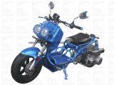 Пермский Моторный Завод Zhenhua150-19n 150cc мотоцикл Cdi Elec диск EPA цикл