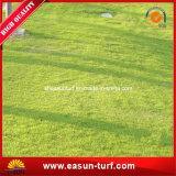 Hilados de polipropileno de 8mm de altura de pila de hierba artificial para el ocio